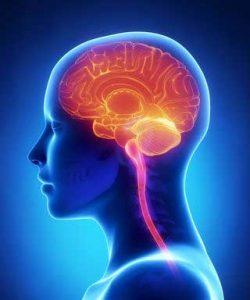 ام آر آی مغز و تشخیص اختلالات روانی